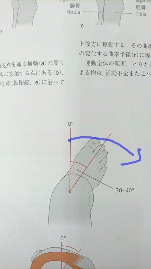 三角靭帯を損傷する時の足首の捻り方