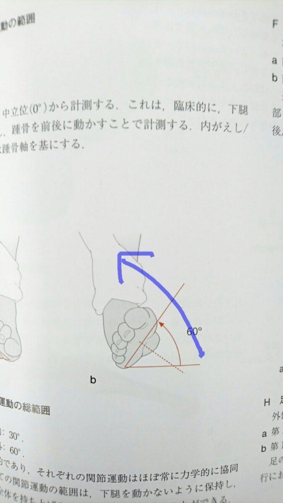 三角靭帯を損傷する時の足首の捻り方 2