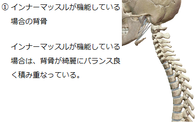 インナーマッスルが機能している場合は、背骨が綺麗にバランス良く積み重なることを説明したイラスト