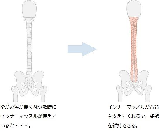 インナーマッスルが使えている場合は姿勢を維持できる